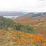 Park City Large Acreage Properties